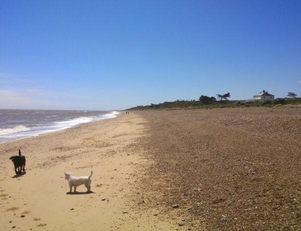 Beach View Holiday Park Sizewell Common Leiston Suffolk IP16 4TU